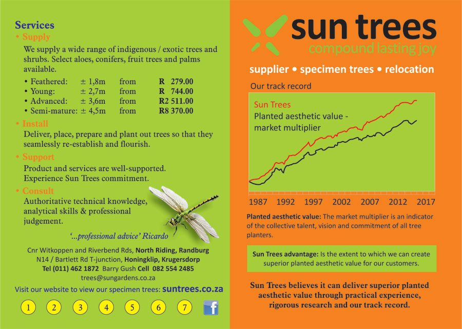 A5-Sun-Trees-Flyer---Page1